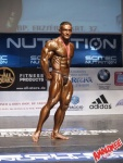 European Championships of Bodybuilding  2004