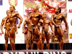 World Championships in Classic Bodybuilding 2009, Madrid